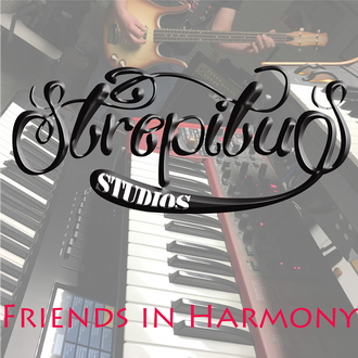 Our latest album – Friends in Harmony.